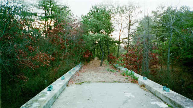 bridgeout